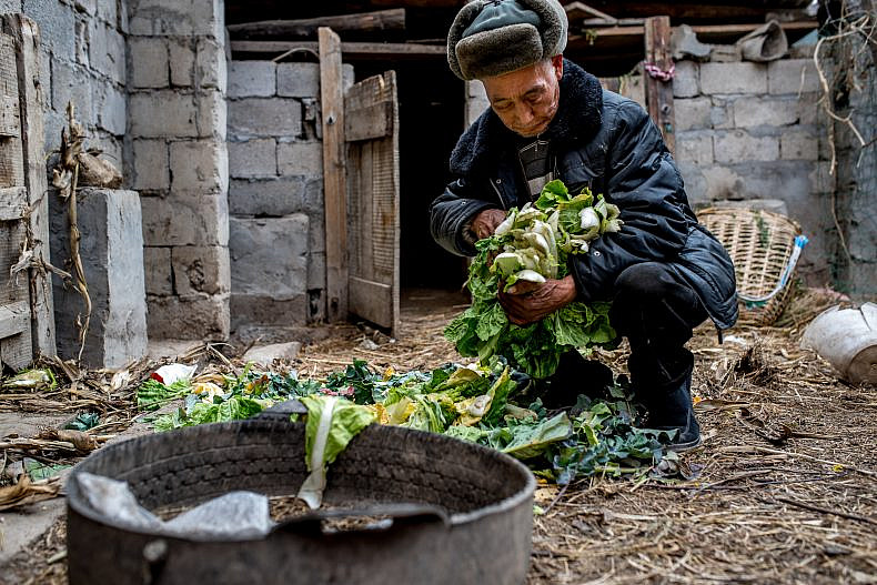 Chao Yunsheng, 78, prepares vegetables to feed to his livestock in the village of Xialuoga. Photo by Luc Forsyth.