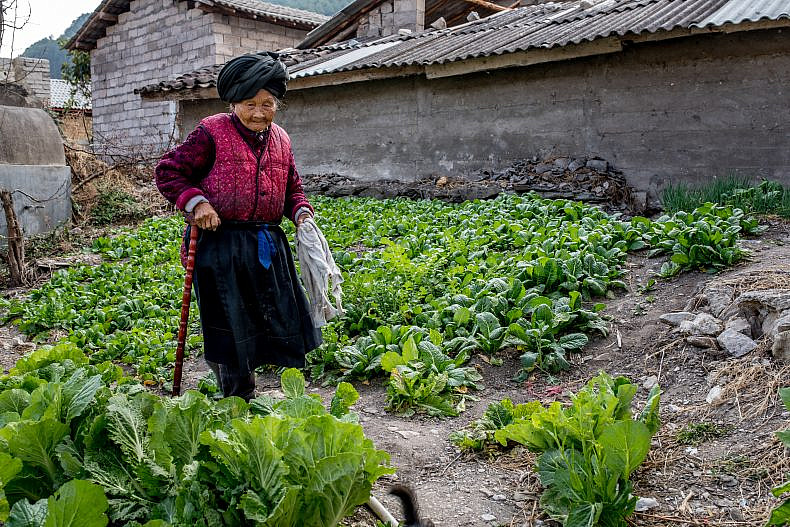 An elderly woman tends to her vegetable plot in the village of Xialuoga. Photo by Luc Forsyth.
