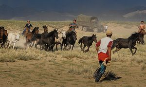 Mongolia: Northeast Asia's Hidden Geopolitical Player