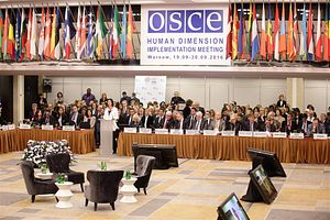 OSCE Manages to Irritate Tajikistan, Kyrgyzstan and Human Rights Advocates, Too