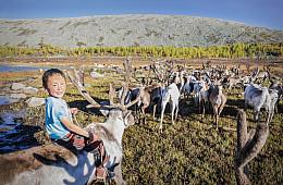 Tsaatan: Mongolia's Reindeer Herders