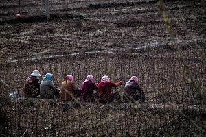 China's Lost Generation: Rural Youths
