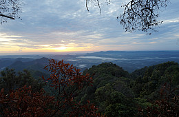 Hadabuan Hills: The Forgotten Rainforest of Sumatra