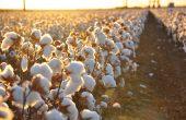 EU Moves Uzbek Textile Deal Forward