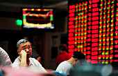 Evaluating China's Economy