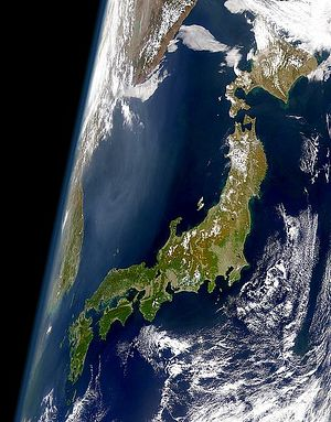 Does Japan Have a Global Environmental Strategy?