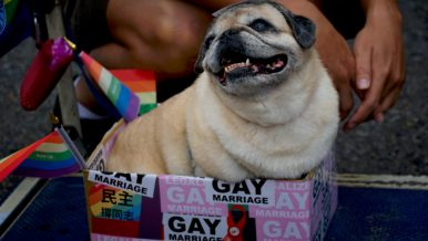 Same-Sex Marriage in Taiwan