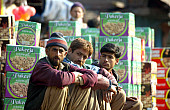 Kashmir's Cross-Border Barter Trade