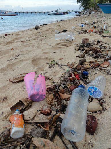 Oceans of Plastic: Fixing Indonesia's Marine Debris Pollution Laws