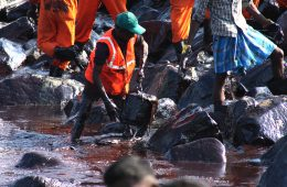 An Oil Spill Rattles the Indian City of Chennai