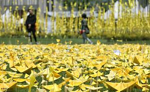 As Sunken Ferry Is Finally Raised, Documentary Explores What Comes After the Sewol