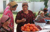 Call Me, Dushanbe: Telia Wants Out of Tajikistan