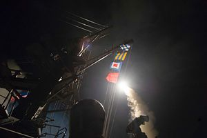 What Do Asian Governments Think About the US Strike on Syria?