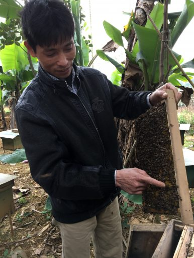 Vietnam's Beekeepers Fight Back