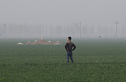 Xiongan: A New City for the Xi Jinping Era