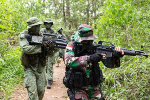 Army Exercise Puts Indonesia-Singapore Defense Ties in Focus