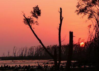 Cyclone Mora: Bangladesh's Natural Disaster Warning System Saved Thousands