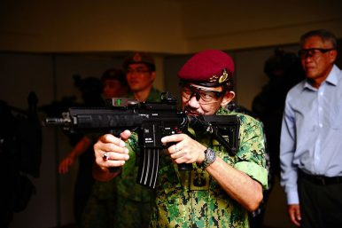 What Did the Brunei Sultan's Singapore Visit Accomplish?