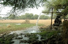 From Evidence to Policy in India's Groundwater Crisis