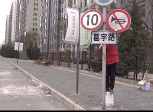 One Man, One Road: A Funny Tale of Civic Protest in China