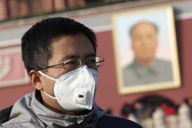 China's Effective Greens and Gaps in Climate Activism