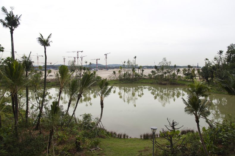 Malaysia's Forest City and the Damage Done   The Diplomat