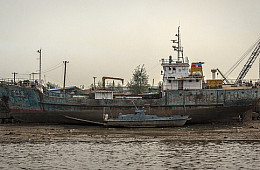 China Bans North Korean Coal, Iron and Seafood Imports