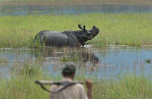 India's Wildlife Trafficking Epidemic