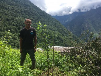 Almond Orchards in Everest's Shadow