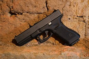 2 Central Asians Arrested in Virginia for Allegedly Attempting to Smuggle Guns to Chechnya