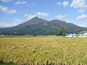 Fukushima Farms Face an Uphill Battle Building Overseas Market Share