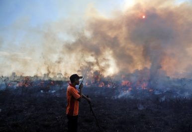 The Other Country Crucial to Global Climate Goals: Indonesia