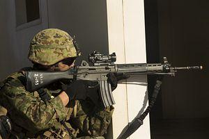 Japan Activates Amphibious Rapid Deployment Brigade