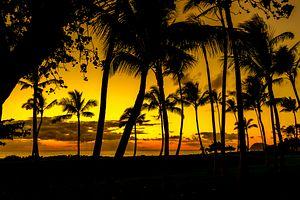 Hawaii: Facing North Korea With the Aloha Spirit