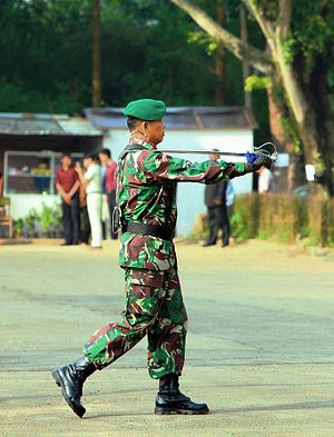 Indonesia Spotlights 'Mentality' Challenge in Its Military Modernization