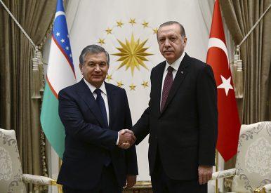 How Will Erdogan's Recent Visit to Uzbekistan Enhance Turkish-Uzbek Cooperation?