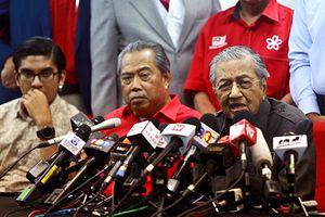 China's Brain, Malaysia's Pain