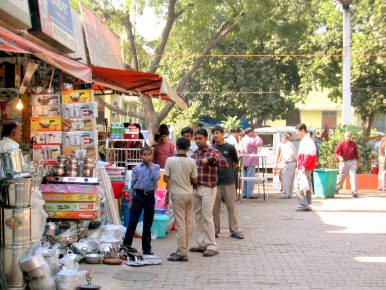 Rooting for the Trees: India's Capital Awakens to Its Ecological Challenges