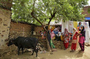 Alwar Lynching: Cow Vigilantes Strike Again in India