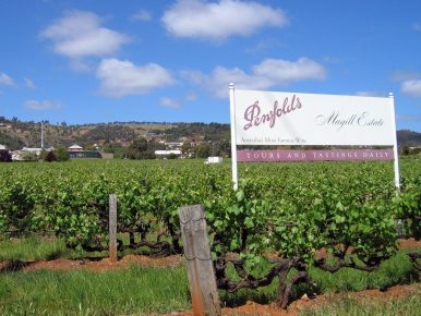 The 'Benfords' Debacle: Counterfeit Australian Wine Floods China