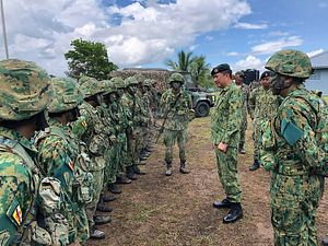 Army Chief Introductory Visit Puts Malaysia-Brunei Ties into Focus