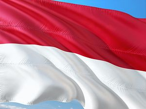 What's Next for Social Media in Indonesia?