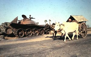 Vietnam's Invasion of Cambodia, Revisited