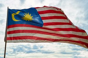 Malaysian Politics Under the New Perikatan Nasional Government