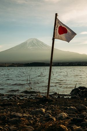 The Toxic Influence of Japan's Rural Political Interest Groups
