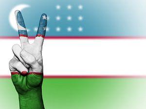 The Missing Piece in Uzbekistan's Reform Puzzle