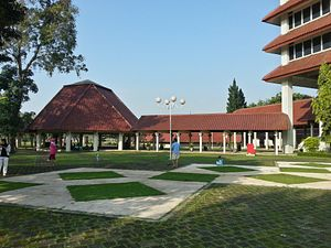 China's Educational Expansion in Indonesia