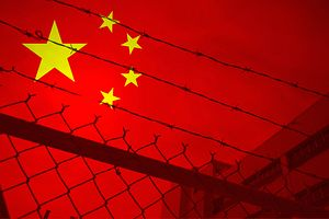 Cracks in the System: COVID-19 in Chinese Prisons