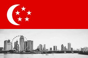 Singapore Leader Calls Early Elections Despite Pandemic