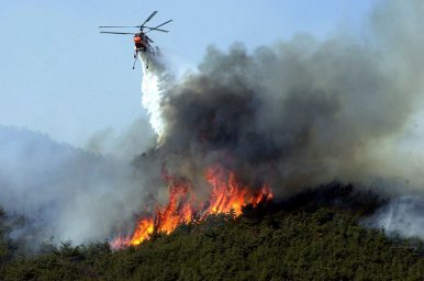 Responders Quickly Extinguish One of Korea's Largest Wildfires